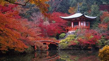 Top Travel Destinations Asia - Kyoto
