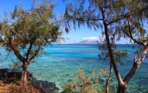 Top Travel <a target='_blank' href='Discount Air Flights'>Destinations</a> Australia and the Pacific - Fiji